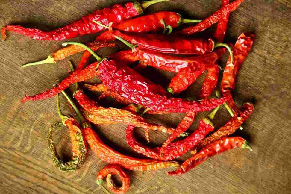 Chilis richtig trocknen